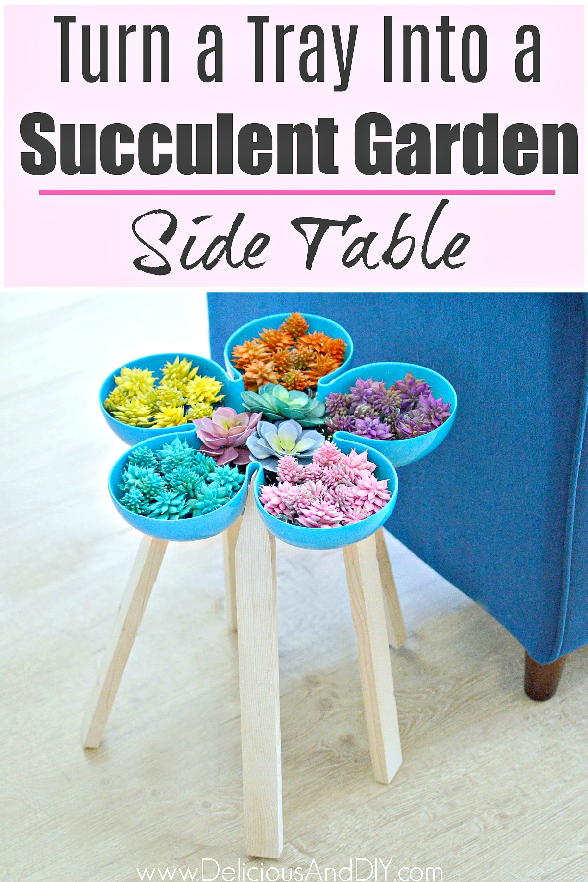 Pier 1 Imports Tray Transformed Into A Succulent Garden Side